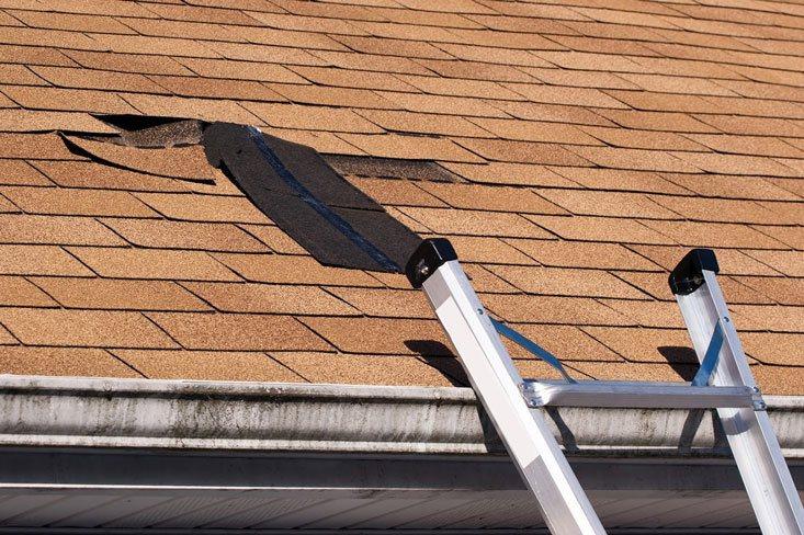 wind damage to asphalt shingle roof in phoenix